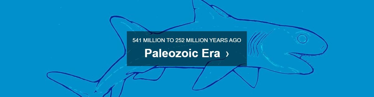 blue background with text paleozoic era 541 MILLION TO 252 MILLION YEARS AGO
