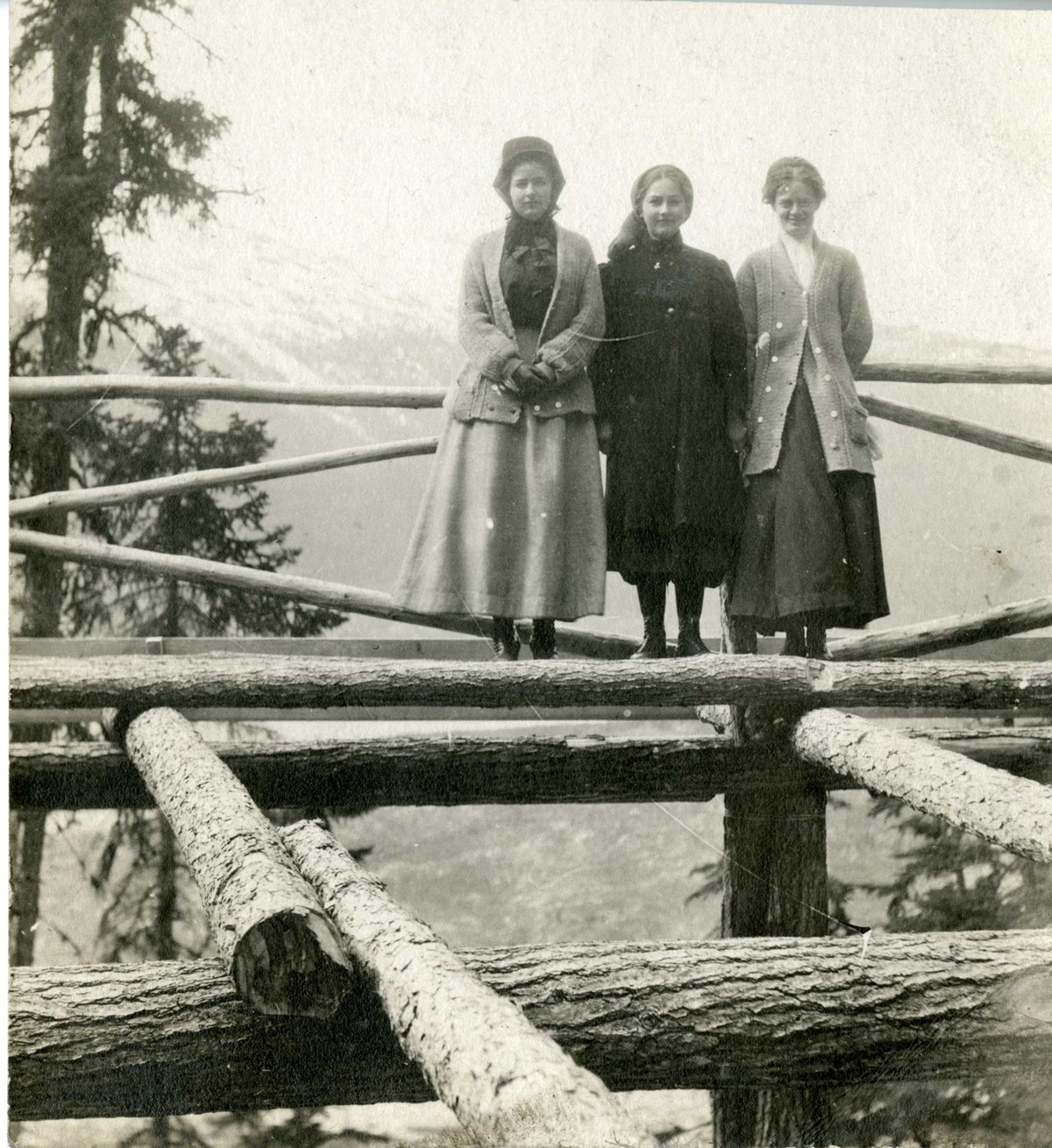 Three woman stand on a stack of logs in dresses