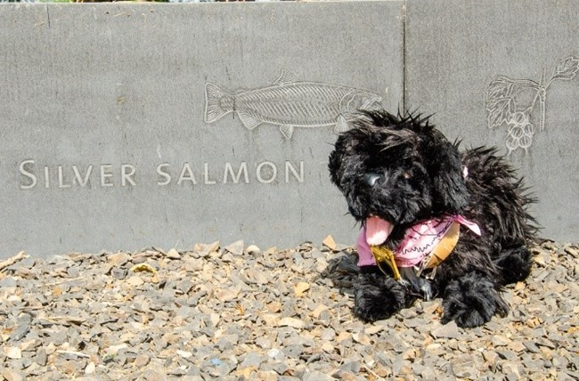 Toy dog near sign