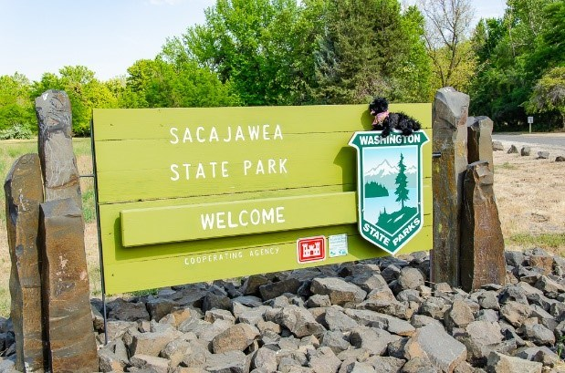 toy dog near entrance sign