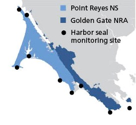 Map showing that harbor seal monitoring occurs in both Point Reyes NS and Golden Gate NRA locations