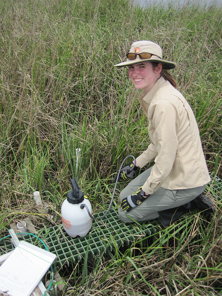 Kate Henderson, Geoscientist in the Park (GIP) at Timucuan Ecological and Historic Preserve, kneeling on a salt marsh platform.