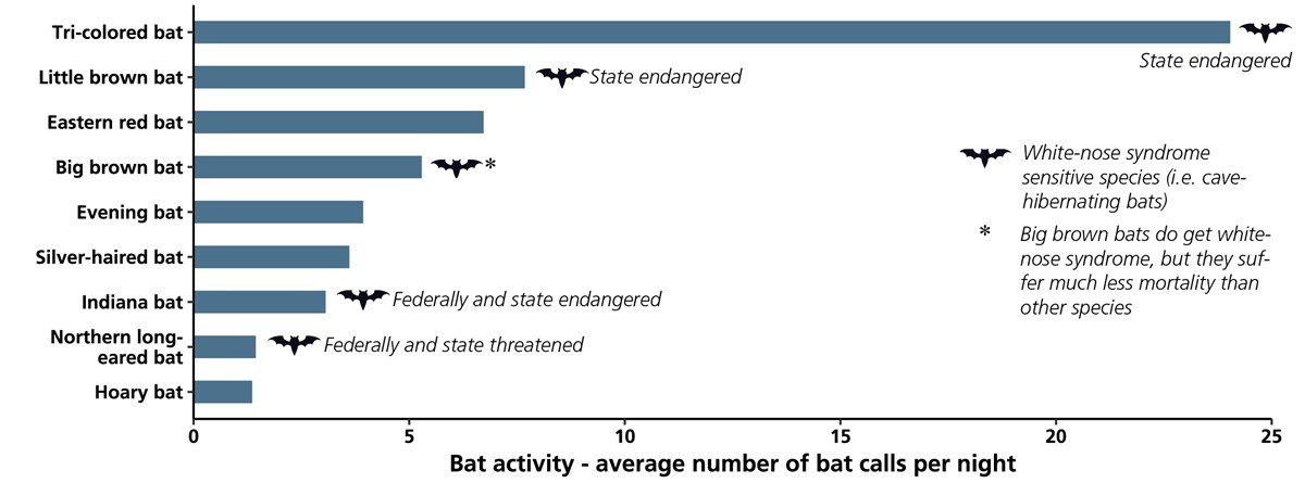 A bar chart of bat activity in the park.