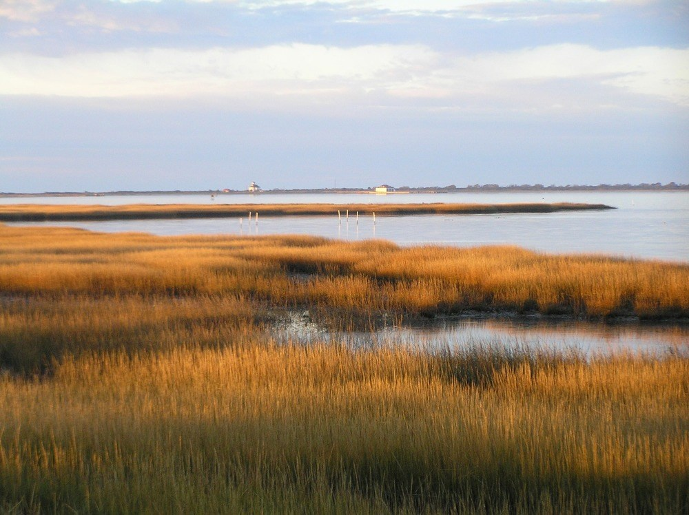a view of a salt marsh at sunset