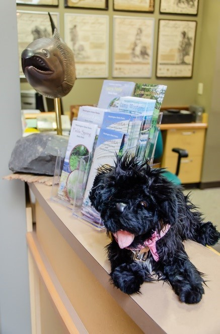 toy dog on desk