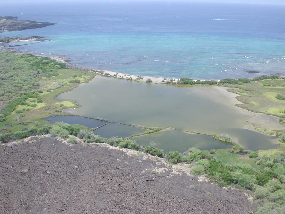 a pond separated by a natural barrier from the ocean