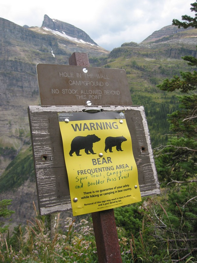 An advisory sign warning hikers of potential bear encounters is posted on a wooden pole along a hiking trail in Glacier National Park.