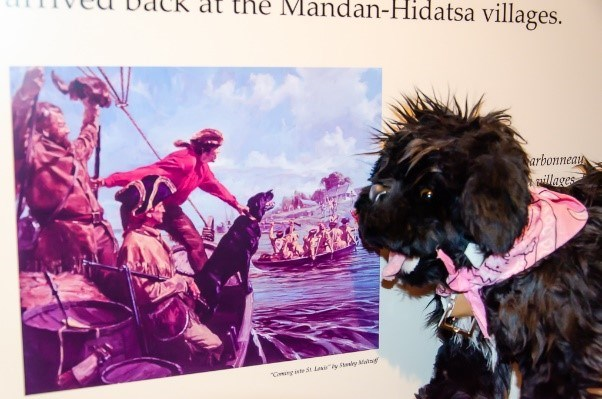 Toy dog near artwork