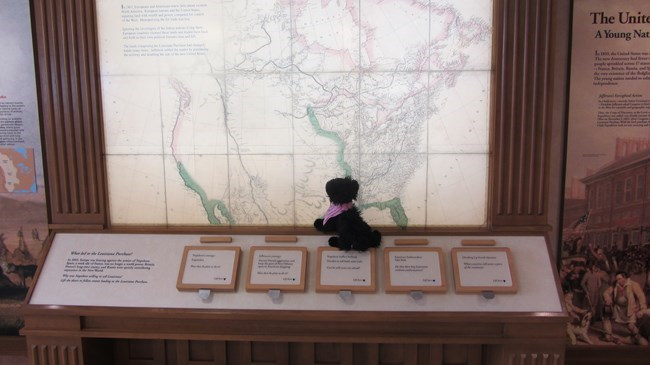 stuffed pup on map display