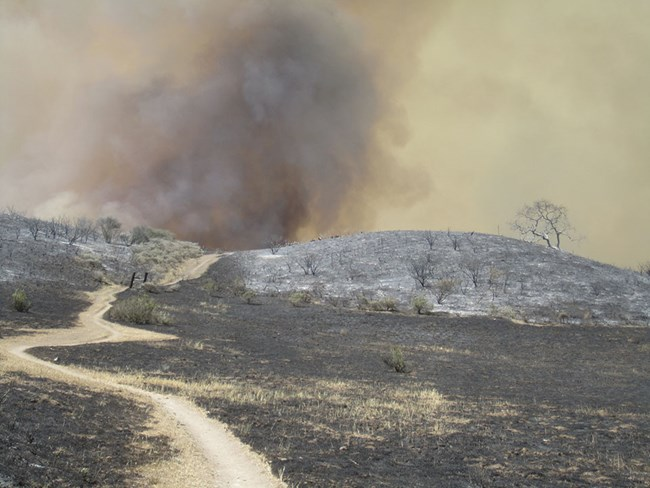 Burnt landscape with smoke rising over the hilly horizon