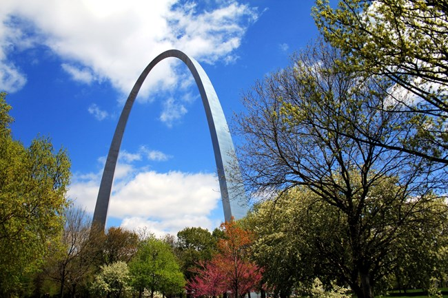 Gateway Arch with fall colors