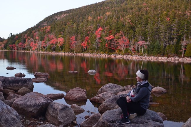 A park visitor and her dog enjoy the fall colors at Jordan Pond in Acadia National Park