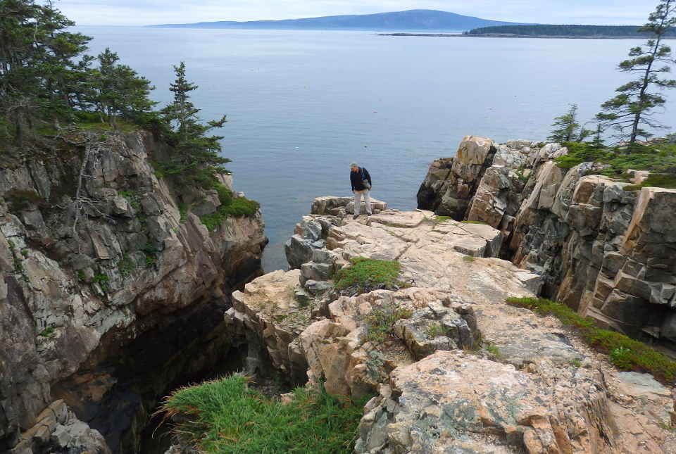 Striking cliffs with trees overlook a cove at Acadia National Park