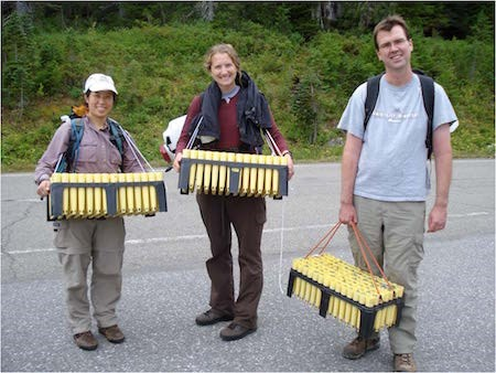 Three people hold large racks containing many rows of seedlings in planting tubes.