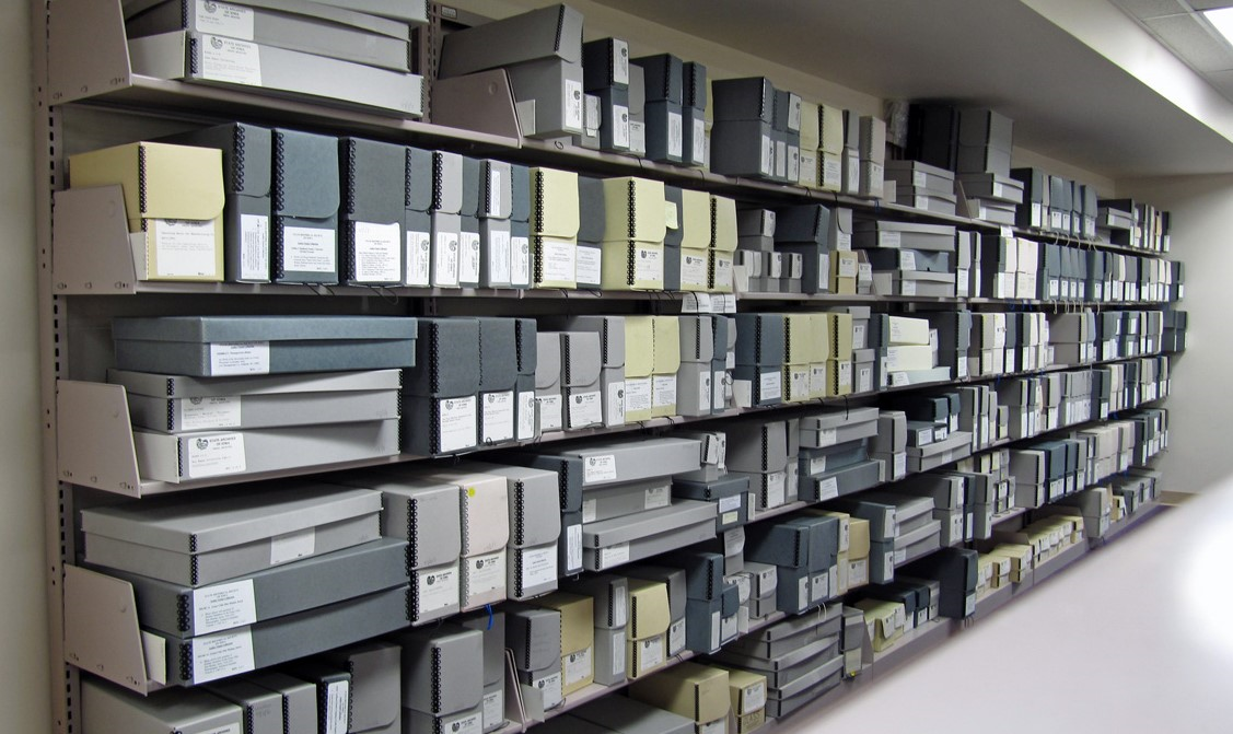 Shelves of file folders and containers.