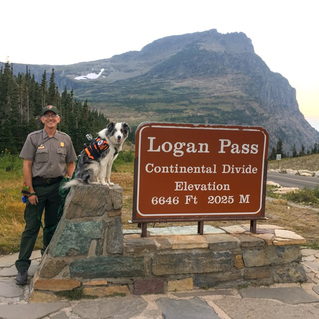 Uniformed ranger and dog pose next to sign for Logan Pass