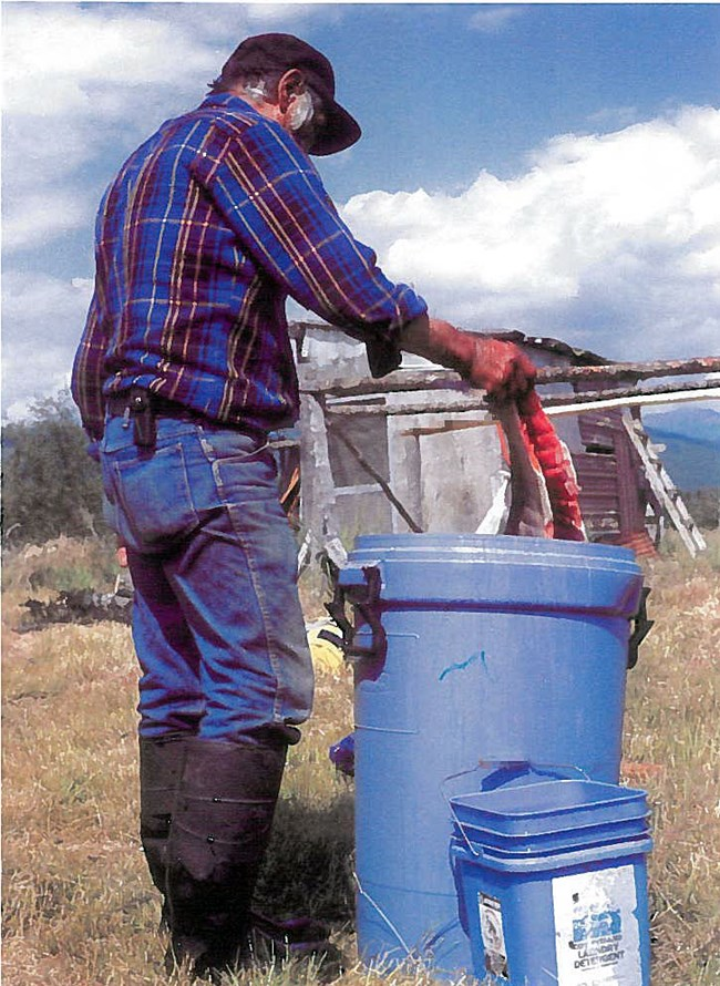 A man in a black hat, plaid-colored shirt and jeans holds filleted salmon over a large blue trash can filled with liquid to brine salmon.
