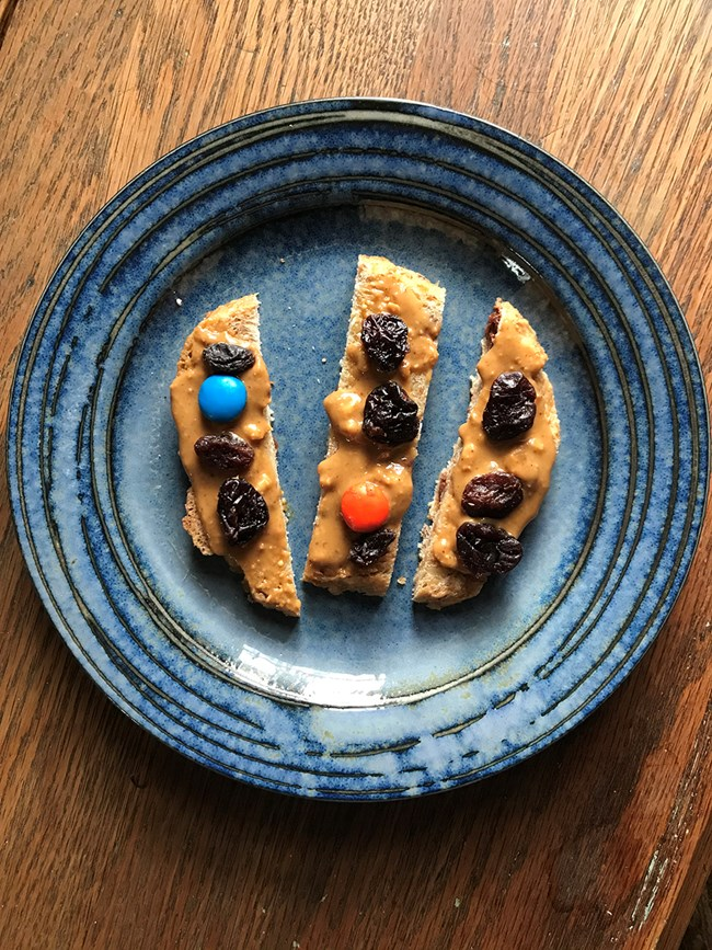 a photo of the snack on a blue plate: strips of bread spread with peanut butter and dotted with raisins and m&ms