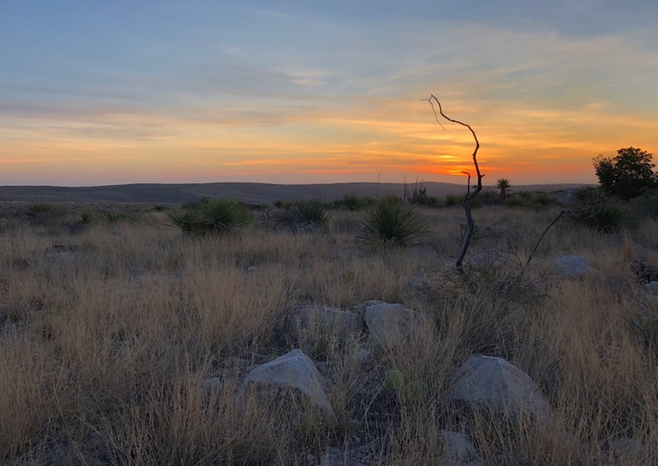 Sunset over the rolling hills and grasslands of Carlsbad Caverns National Park in New Mexico.
