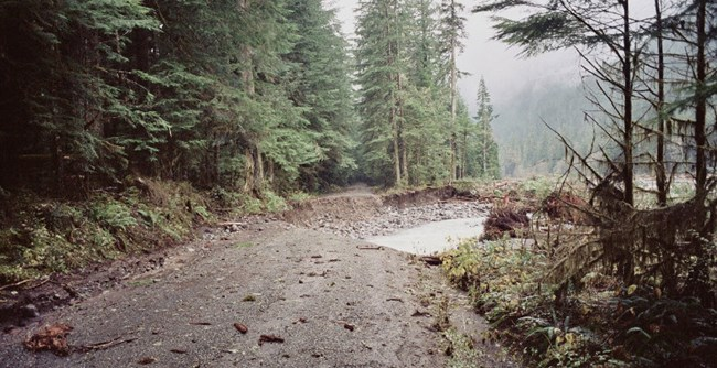Washed out section of Carbon River Road after 2006 flood.