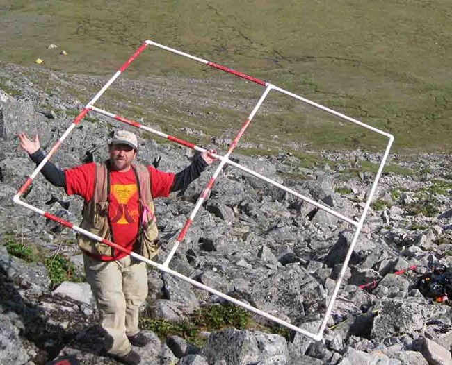 Carl Roland on a rock slope with a frame to measure vegetation plots.