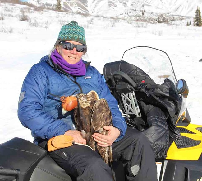 Carol with a Golden Eagle