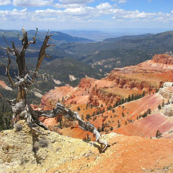 Cedar Breaks National Monument hoodoos