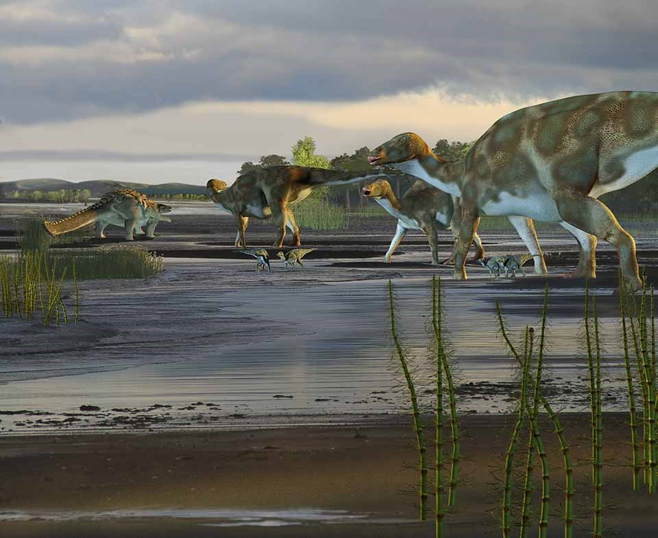 An artist drawing of Hadrosaurs in Alaska.