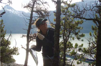 a scientist collects lichen from a tree on a forested mountainside, holding a collection bag
