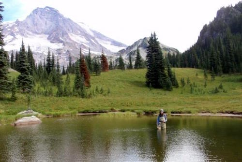 A woman in waders stands hip deep in a subalpine pond surrounded by mountains.