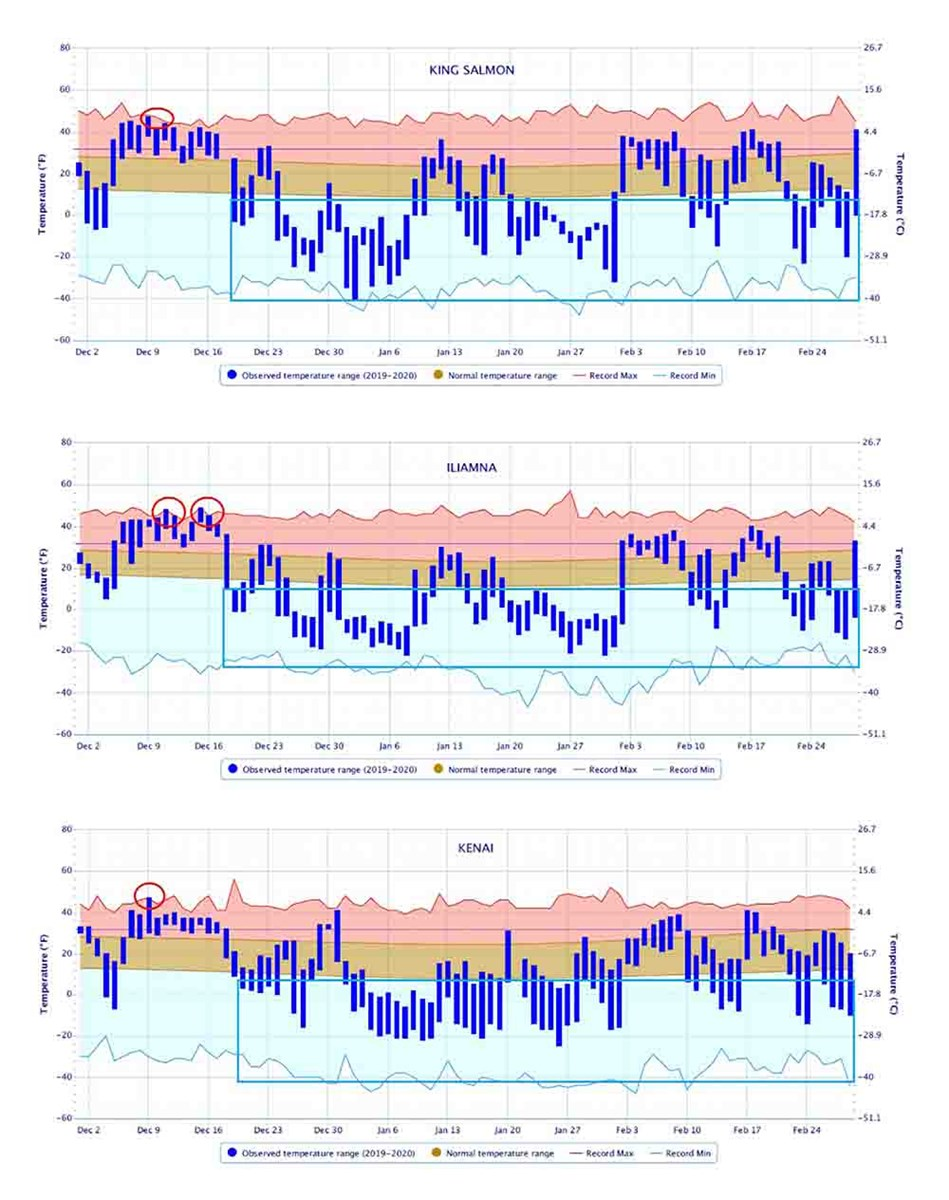 Three graphs showing the winter temperatures across Southwest Alaska, including record-breaking warm days.