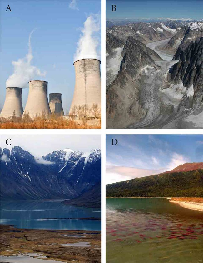 A series of four images showing potential sources of contamination,