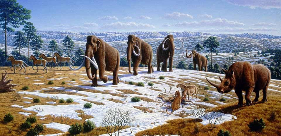 A drawing of the ice age megafauna that roamed Alaska.