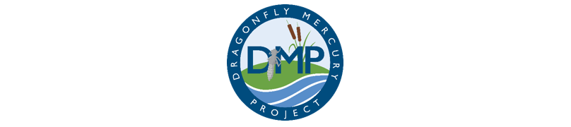 Logo for Dragonfly Mercury Project
