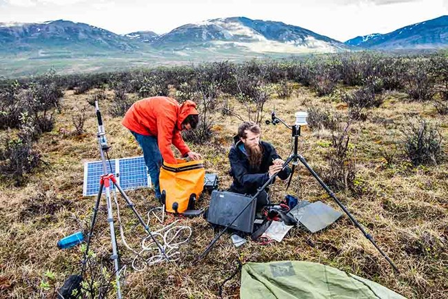 Two sound ecologists work in the field setting up equipment.