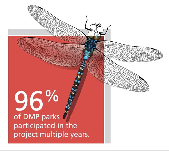 "dragonfly hovering over a box that says, ""96% of DMP parks participated in the project multiple years."""