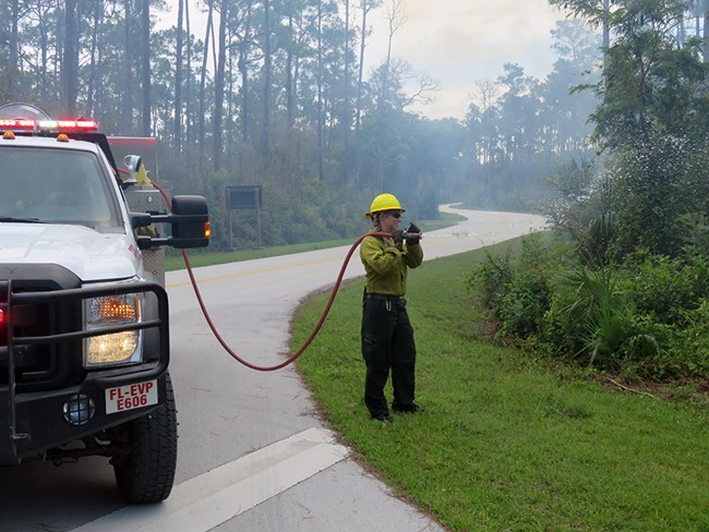 A firefighter uses a hose from an engine to dampen vegetation.