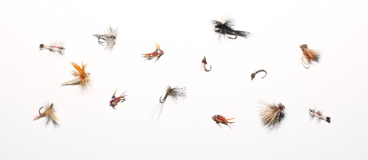 various fishing flies arranged on white background