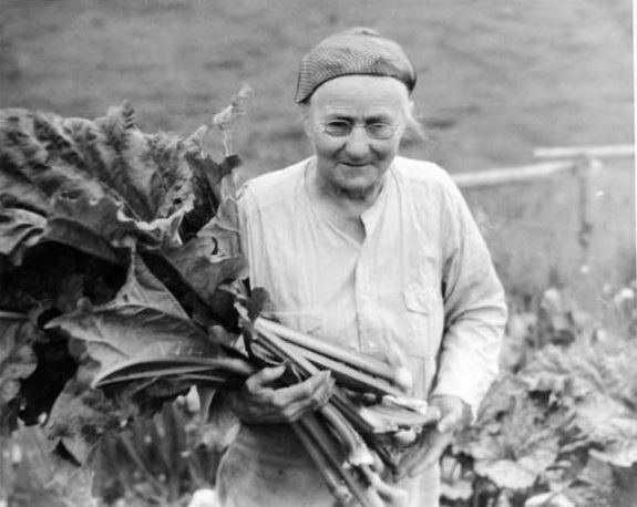 a woman holding very large rhubarb leaves
