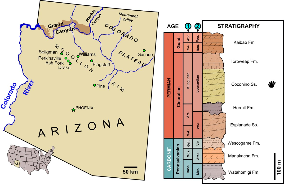 area map of grand canyon, arizona and a stratigraphic column of rock layers