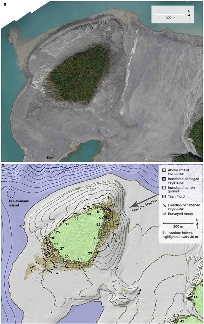 Two images--aerial imagery and topo map--showing tsunami runup.
