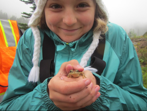 A girl holds a frog up in her clasped hands.