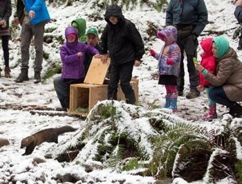 A fisher bounds out of a wooden box while children and people watch.