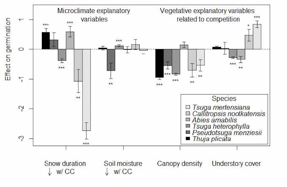 Bar graph shows negative and positive effects on germination of microclimate or vegetative explantory variables for six species of trees.