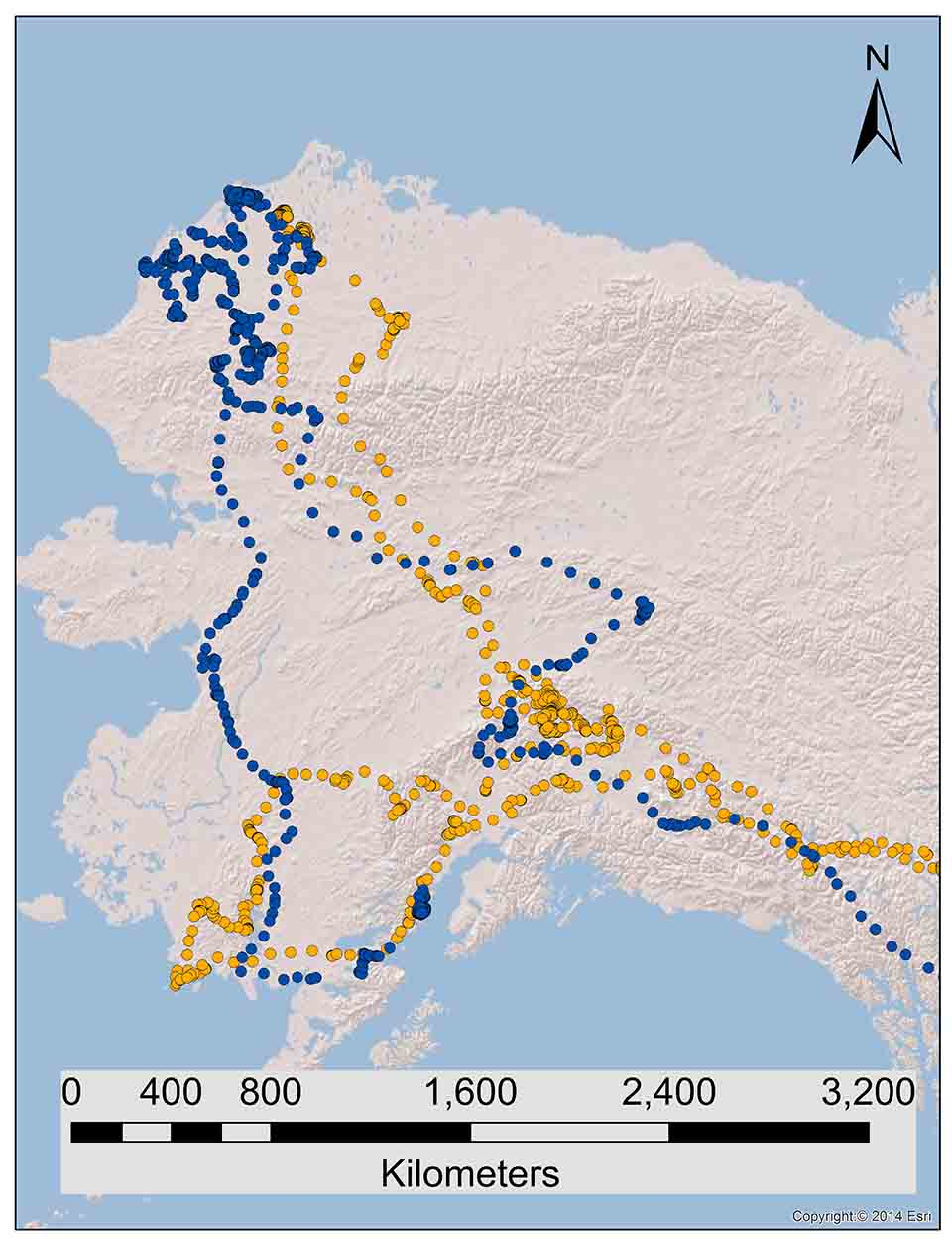 Statewide Movements Of Non Territorial Golden Eagles In Alaska Diagram Additionally Bald Eagle Life Cycle On During The Breeding Season Information For Developing Effective Conservation Plans Us