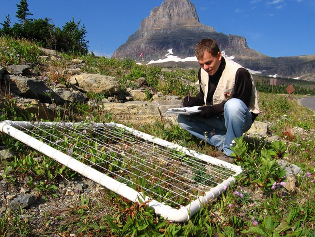 Park scientist recording monitoring data on a clipboard