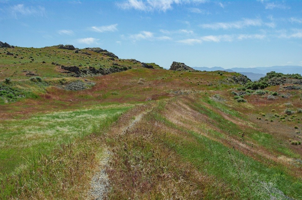 Trail on a grassy hillside