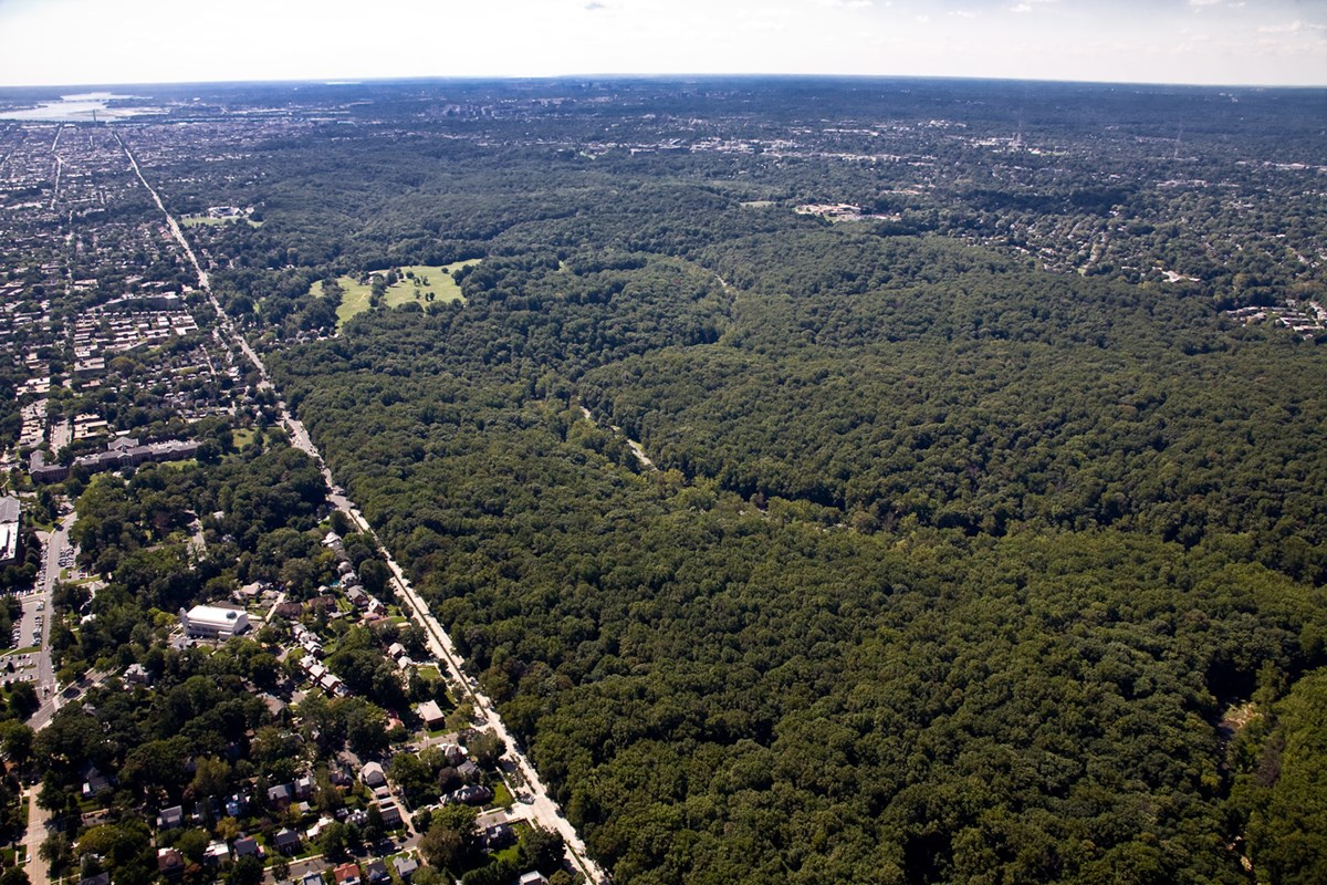 Aerial view of the eastern boundary of Rock Creek Park, showing the divide between forest and urban development.