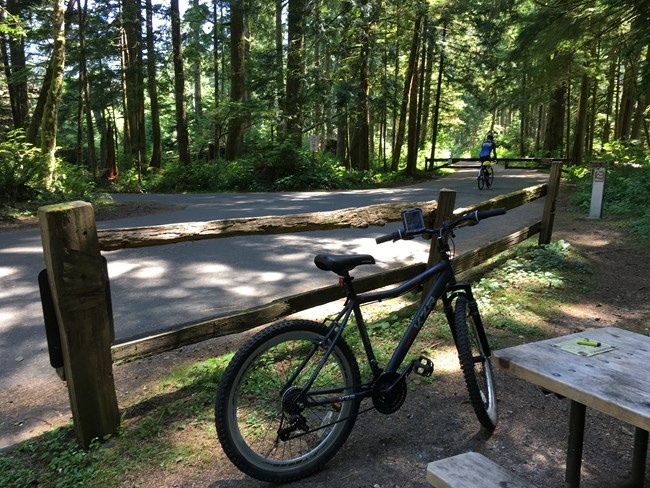 Mountain bicycle leaning against fence at Carbon River entrance.