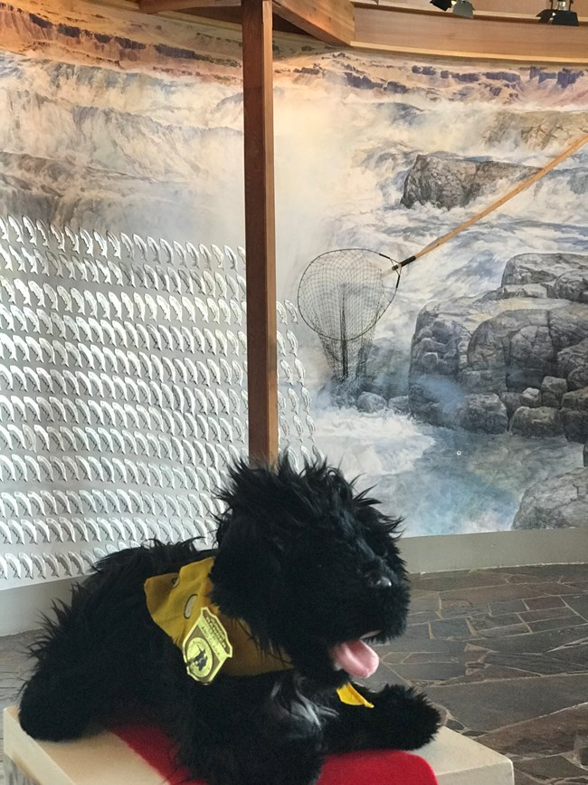 stuffed pup near mural of waterfall